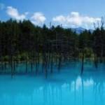 青い池 北海道にある美しい池です。旭川の隣町 カルビーの美瑛町にあります